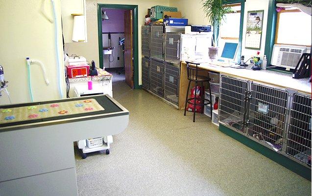 Examination table & crates